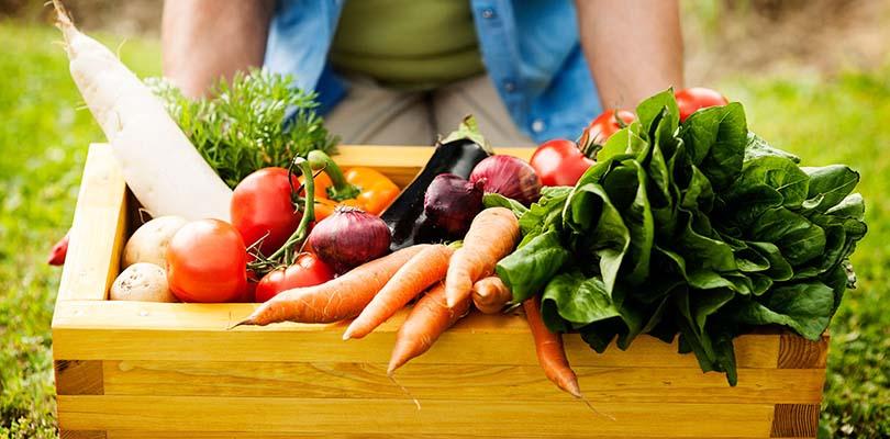 A basket of IBS diarrhea diet friendly foods