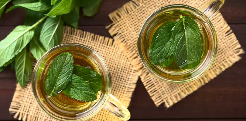 Two glass mugs of peppermint tea with peppermint leaves in them.